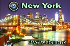 Live webcam New York City - TOP-10